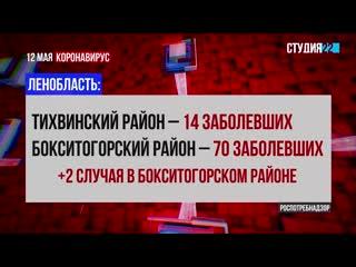 Коронавирус: информация по Бокситогорскому району на 12 мая