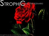 Trip Hop Music - CLASSIC CASE SCENARIO (Produced By Strophic)
