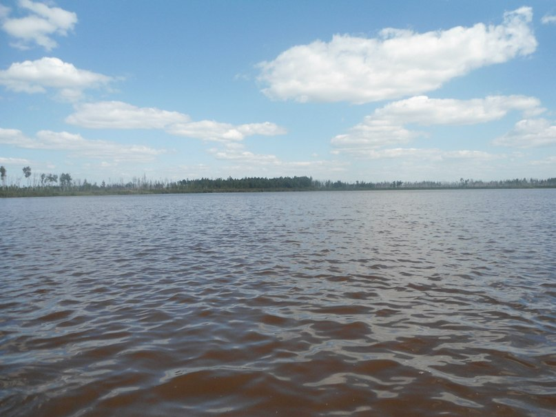 Михаил Ширяев | Нижний Новгород