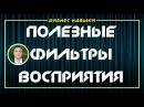 Полезные фильтры восприятия Евгений Гришечкин