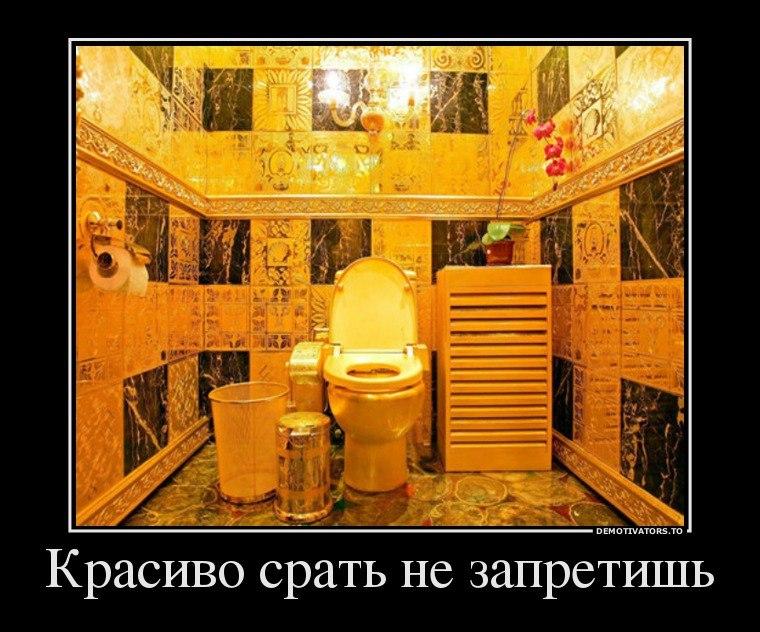 Карманов к чему снится сортир фон Белов говорит