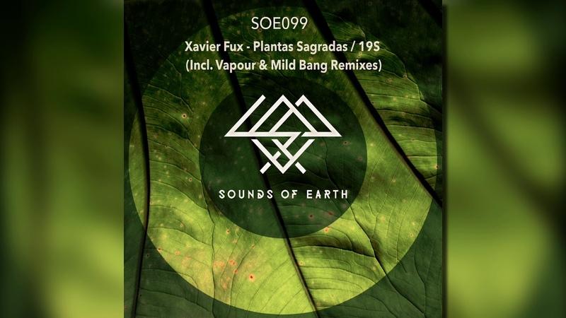 Xavier Fux feat Danit Plantas Sagradas Vapour Remix