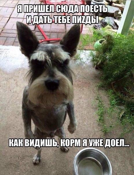 Всяко - разно 138 )))