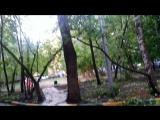 2 видео ,Последствия урагана в Москве 29,05 2017 год