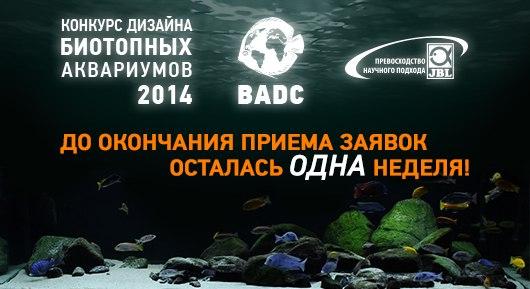 Конкурс дизайна биотопных аквариумов JBL 2014 FX-HFmHyPuY