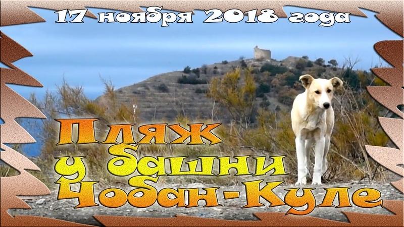 Ноябрь в Крыму: кемпинг в Морском или как собачки ждут туристов
