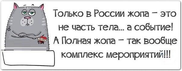 http://cs314829.vk.me/v314829955/3e27/04J7AN0HAlk.jpg