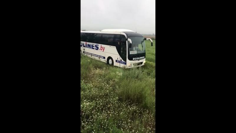 В Украине автобус с белорусами вылетел в кювет
