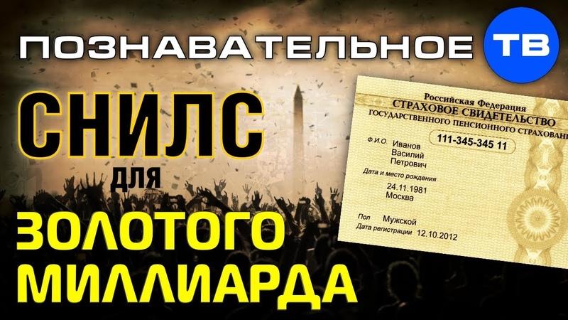 СНИЛС для золотого миллиарда Познавательное ТВ Артём Войтенков