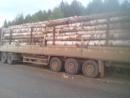 Погрузили Freightliner круглым лесом