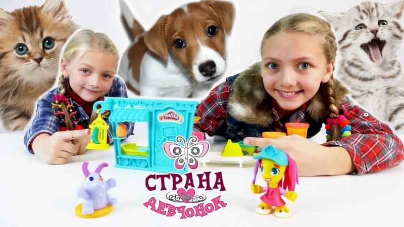Страна девчонок • Открываем зоомагазин Play Doh Town!