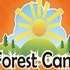 Летний лагерь Forestcamp