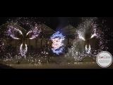 Фейерверк от Love Decor для Елизаветы и Кирилла 19.05.2018г.