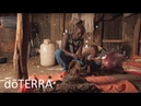 DoTERRA Frankincense Oil: Co-Impact Sourcing of doTERRA Frankincense Essential Oil