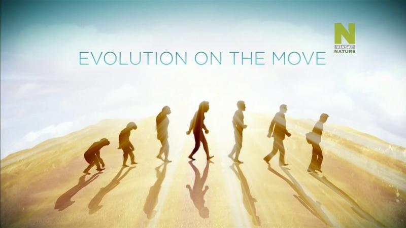 Эволюция в действии, 1 эп.