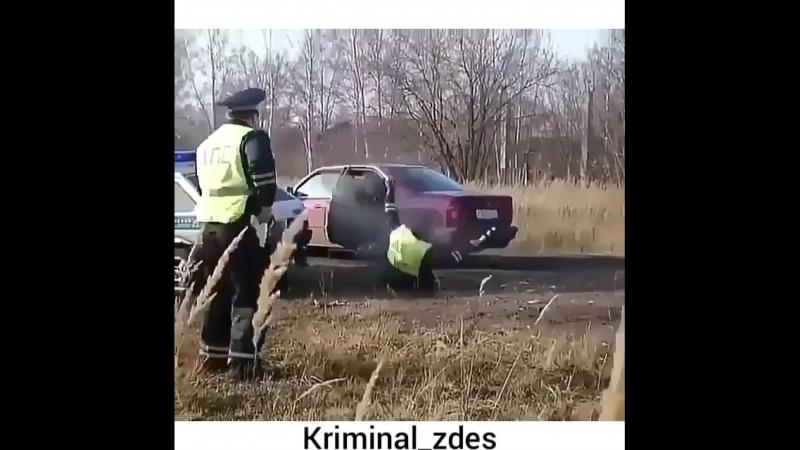 Kriminal_zdesBn-sZYwAGpE.mp4