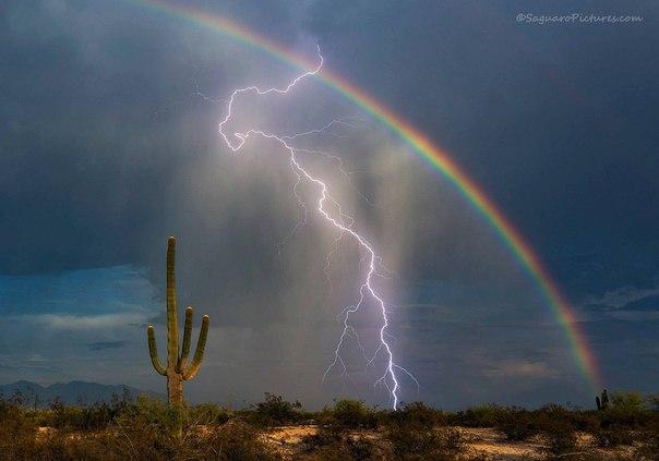Фотограф Грег МакКаун (Greg McCown) сделал снимок всей жизни: молния и радуга в одном кадре