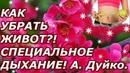 КАК УБРАТЬ ЖИВОТ! СПЕЦИАЛЬНОЕ ДЫХАНИЕ! Андрей Дуйко. Школа Кайлас.