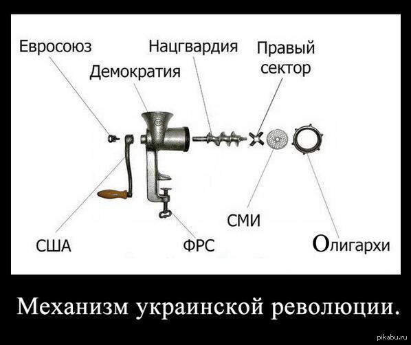 https://pp.vk.me/c616127/v616127318/ce40/gli37ZZMuMg.jpg