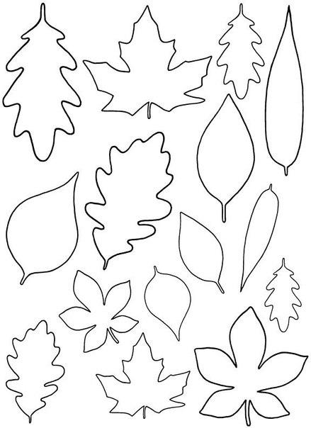 листья картинки шаблоны