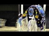 Apache Gold Casino 2013 Powwow Women's Traditional Dance