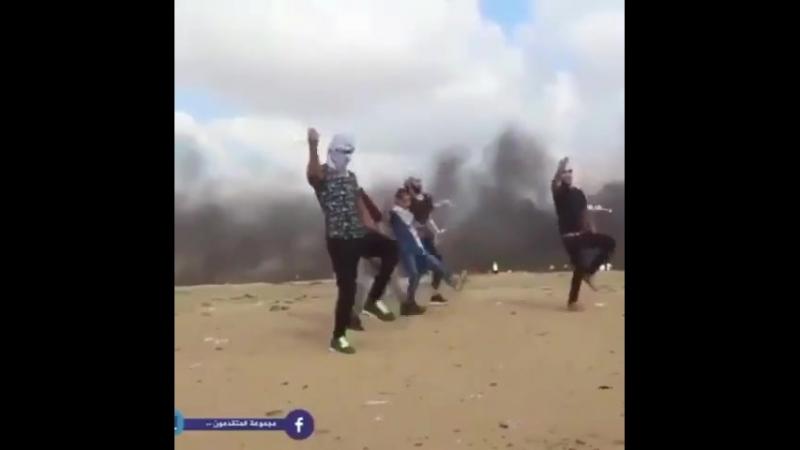 Палестинская дабка на границе с израилем снайперы не далеко