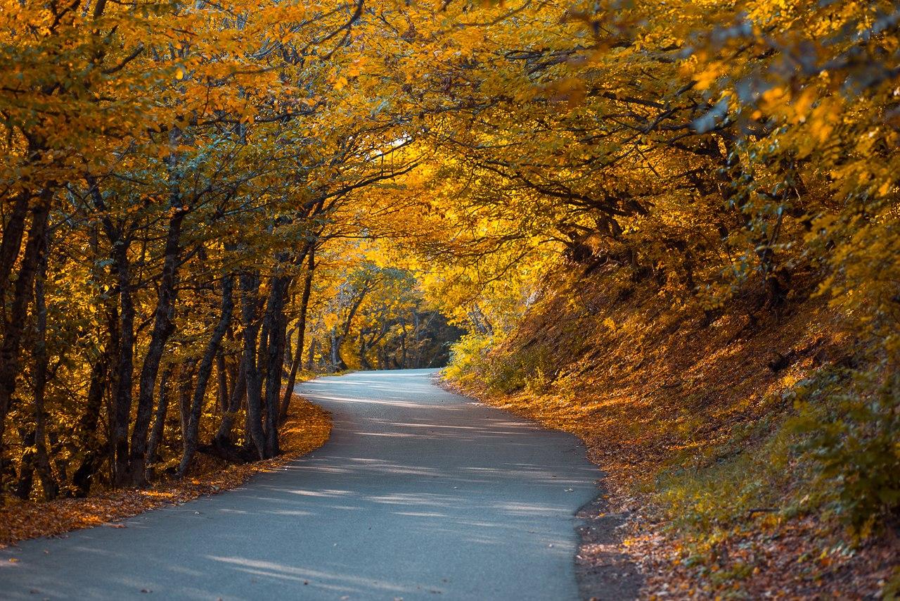Осенняя кольцевая дорога на Бештау