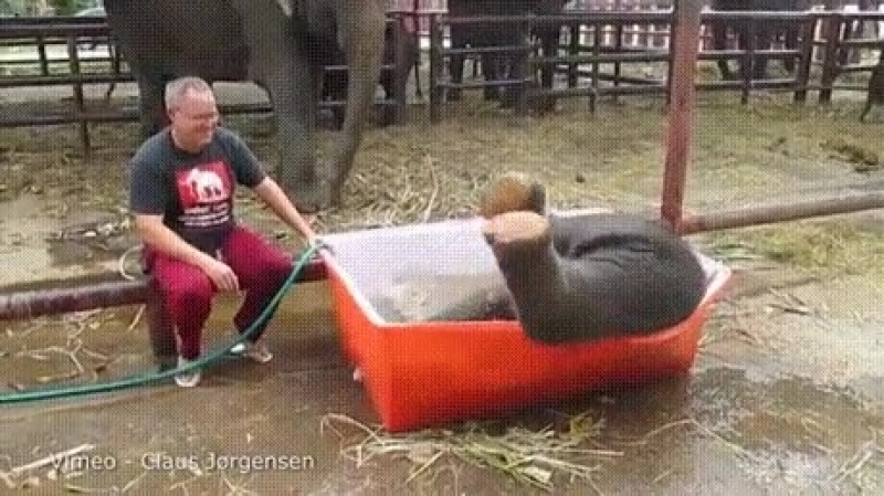 немного пьяненькая)