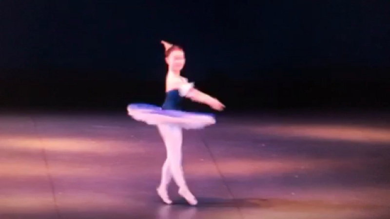 Harlequinade variation