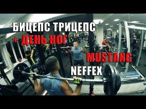 Бицепс, Трицепс День Ног. Mustang. NEFFEX.