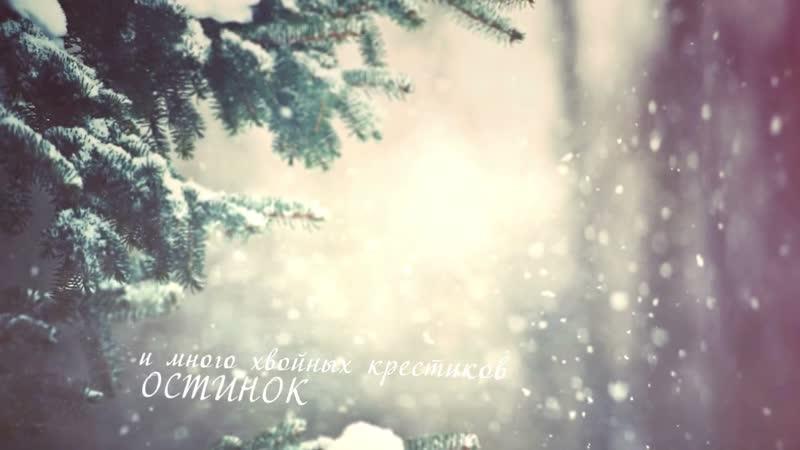 Бунин, Иван - Густой зеленый ельник у дороги... (чит. Артем Волков)