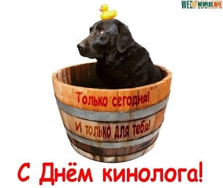 http://cs618131.vk.me/v618131197/ce0d/ku9Pg74JEpQ.jpg