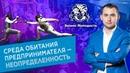 Михаил Дашкиев Бизнес Молодость бизнес с нуля, хейтеры, рост в 1000 раз