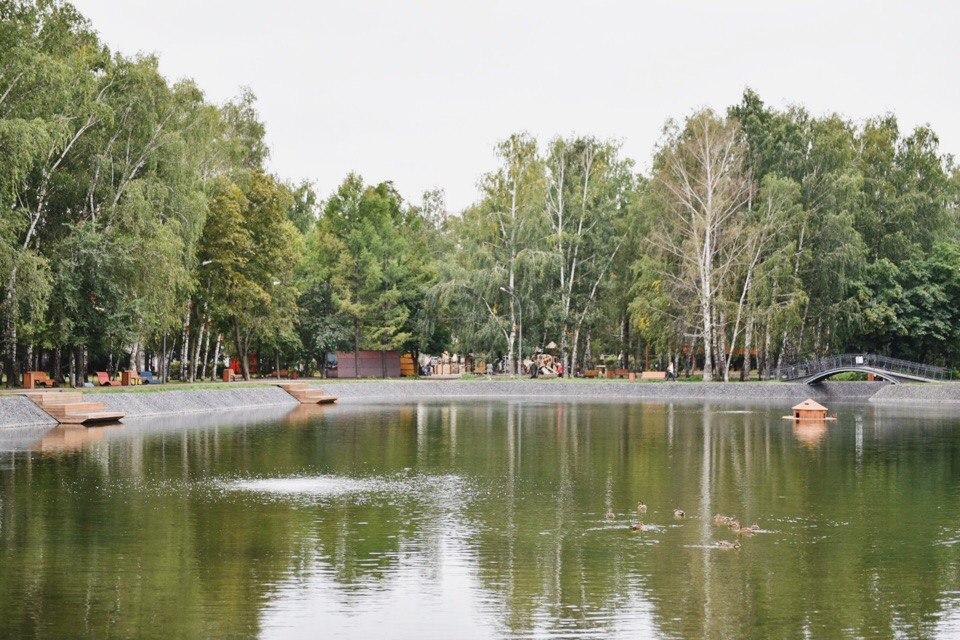 Новый берег озера. Фото: vk.ru