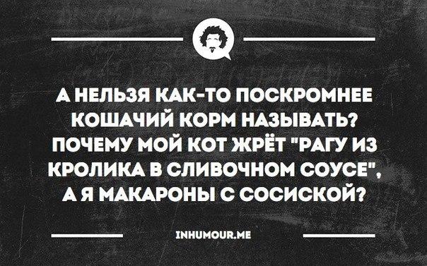 https://pp.vk.me/c543101/v543101554/1a0bd/DMns-DSdzVY.jpg