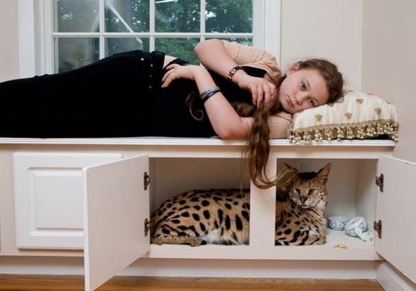 Маленькая дочка в мире животных. Арт-проект Amelia's world от Робин Шварц _SaRH8gGCgs
