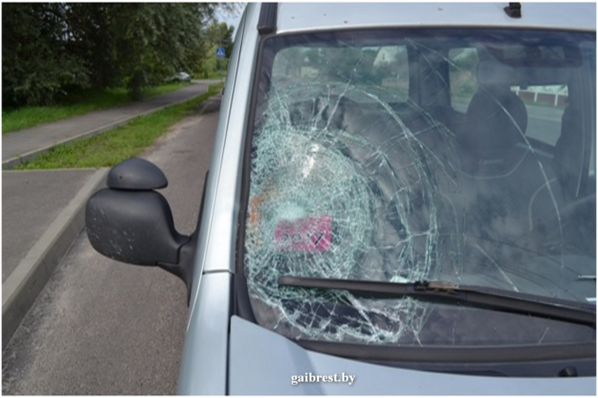 Водитель «Рено Кэнгу» совершил наезд на девушку-пешехода