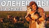 КАК ЖИВУТ ОЛЕНЕВОДЫ НА ЯМАЛЕ ПО ПРАВДЕ! Ненцы, олени и собаки посреди тундры на крайнем севере