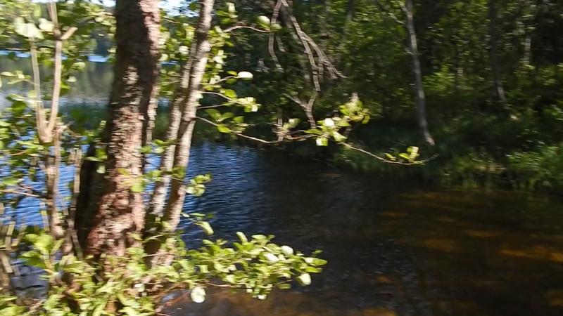 Селигер-Весна Протока (Берёзовый Рядок)__)