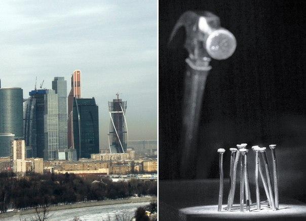 архитектура скульптура живопись: