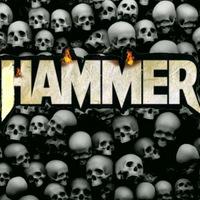 Анкета Andrei Hammer