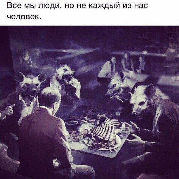 Фото №456239493 со страницы Саника Луценко