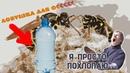 DIY Бесплатная ловушка для ос из пластиковой бутылки РАБОТАЕТ √