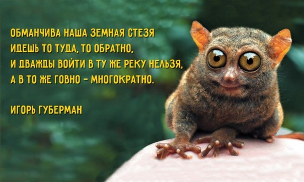 С Днем рождения, Игорь Губерман! Спасибо за хлесткие и меткие гарики, в которых ну просто вся суть жизни, любви и человека. Долгих лет жизни! Хлесткая поэзия Игоря Губермана: ↪