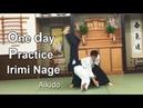 Aikido - One day practice Irimi Nage 合気道 入身投げ稽古