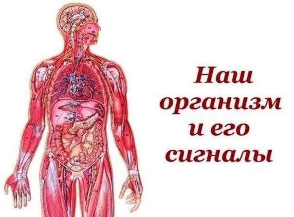 https://pp.userapi.com/c7002/v7002395/c6bf/e3zLQ6jgaZo.jpg