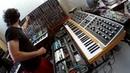 Moog One, Grandmother, System 55 and Digitakt - Second tune