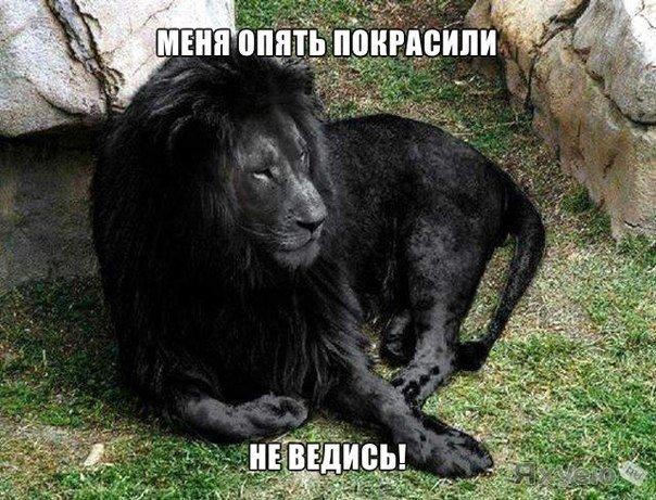 Ежедневно в ВКонтакте встречаются сотни лже-постов. Отныне в группе  будут разоблачать все подобные посты, чтобы ВЫ знали правду. Чтобы вас не держали за идиотов!  Одобряем группу! Читайте правду - vk.com/vkscience