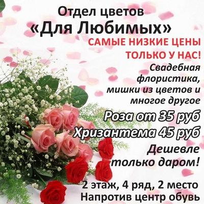 Марина Александровна, 15 ноября , Пермь, id205373630