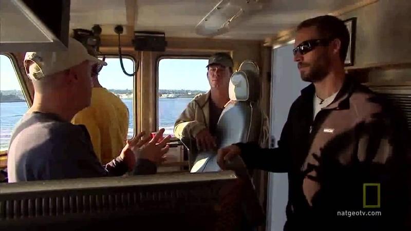 Paul Walker The Crew of Shark Men Discuss Sharks in Mali